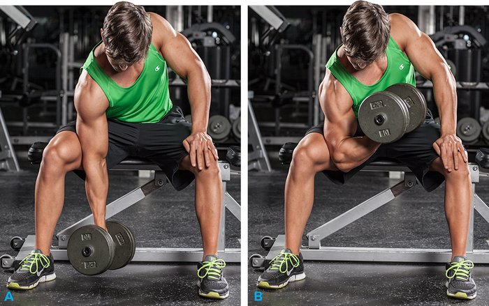 Image result for Biceps workout