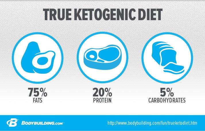 easy 5-ingredient ketogenic diet pdf