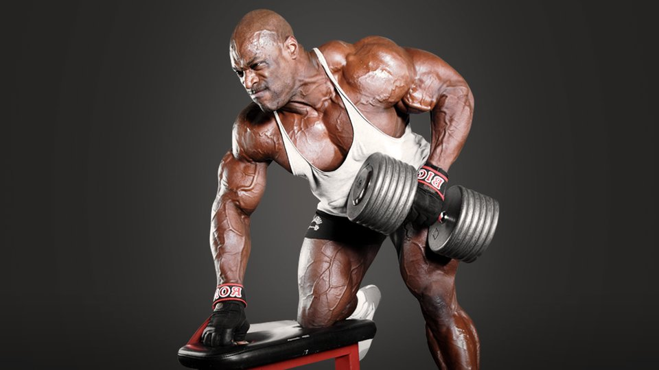 Top Home Body Building Apps