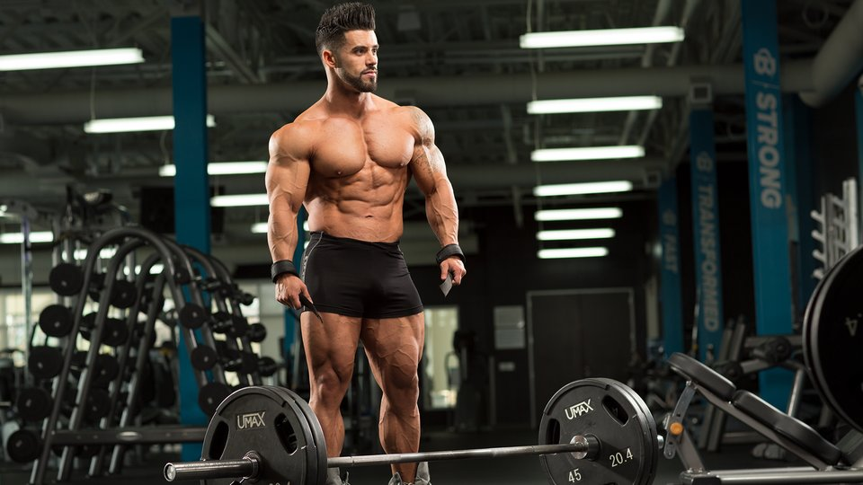 Image Result For Best Creatine Supplement For Building Muscle