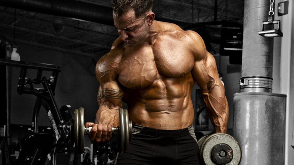 Grow Like Guy: Guy Cisternino's Workout, Meal, And ...