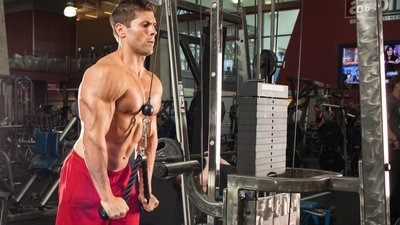 Workout Routine For Killer Triceps! banner