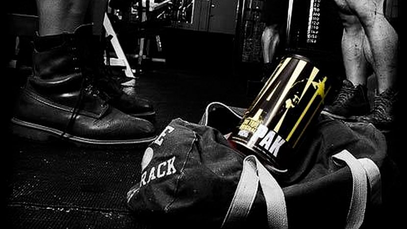 Supplement Company Of The Month: Universal Nutrition