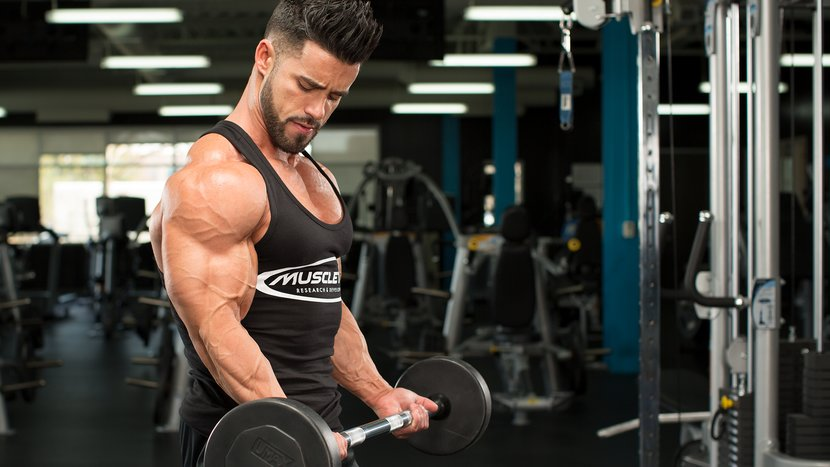 Your Blueprint For Bigger Arms