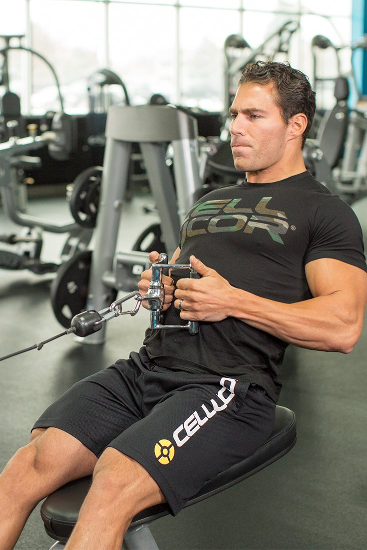 building muscle bodybuilding Learn how to build muscle, burn fat and stay motivated  muscle & strength rewards  preparing for your first bodybuilding show  posted in: workout routines .