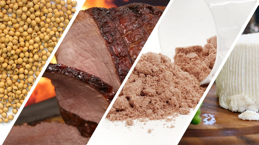Are You Getting All You Need From Protein?