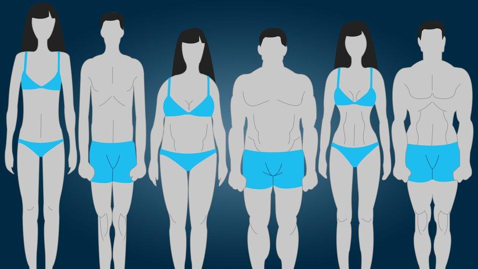 Match com body types
