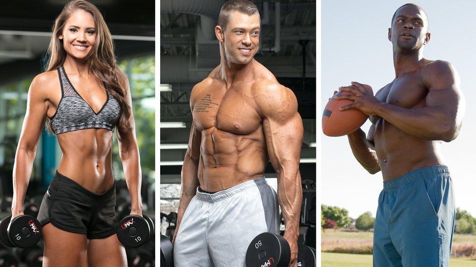 sample bodybuilding diet bodybuilding diet plan for mass