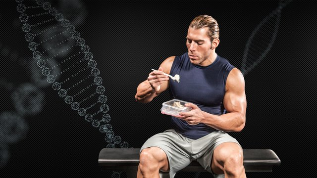 Nutrition for Building Muscle