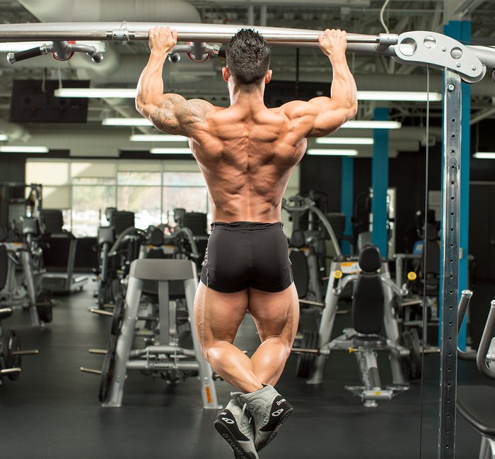 The Beasts Only Back Workout