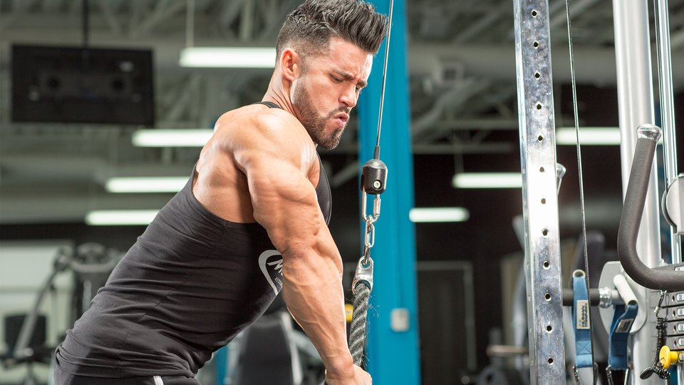 The Perfect 30-Minute Arm Workout | Bodybuilding com