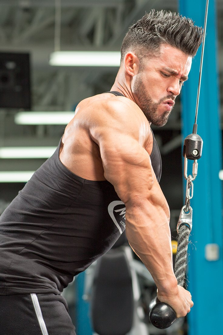 The Perfect 30-Minute Arm Workout