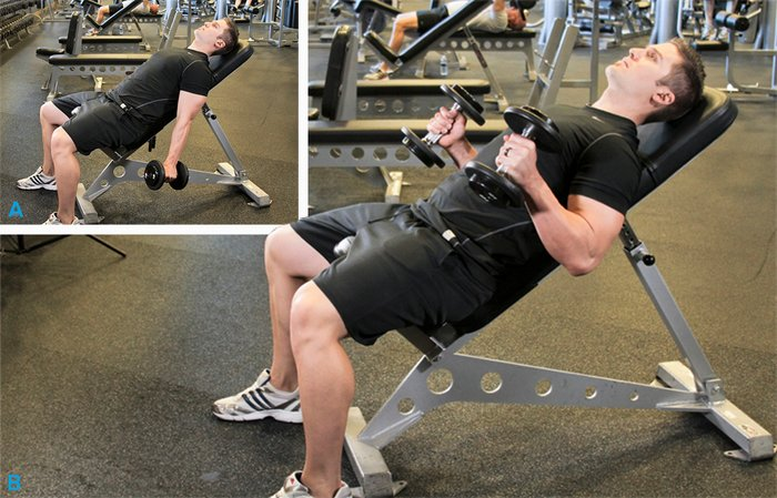 Incline Hammer Curls-Biceps Workout