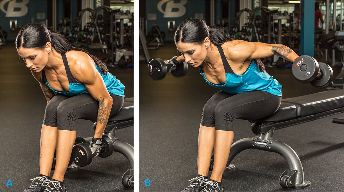Seated Bent-Over With Dumbbells