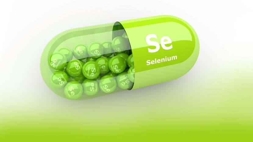 Your Ultimate Guide To Selenium