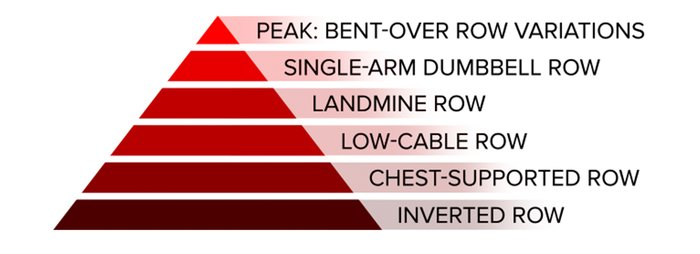 Row/horizontal pull; peak: bent-over row variations, single-arm dumbbell row, landmine row, low cable row, chest-supported row, and inverted row