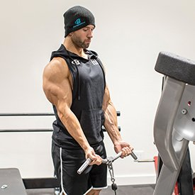 Double Arm Cable Biceps Curl image