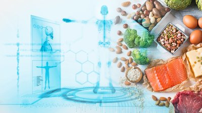 What Do Our Bodies Use Protein For?