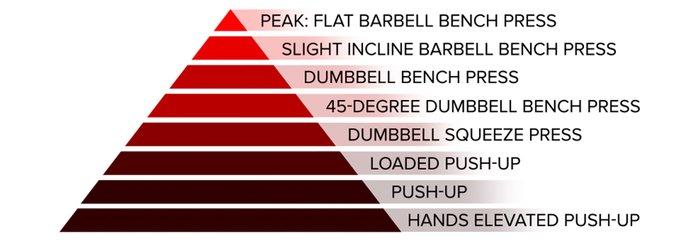 Horizontal push; peak: flat barbell bench press, slight incline barbell bench press, dumbbell bench press, 45-degree dumbbell bench press, dumbbell squeeze press, loaded push-up, push-up, and hands-elevated push-up