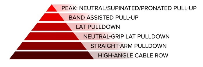 Vertical pull; peak: neutral/supinated/close-grip pull-up, band-assisted pull-up, lat pulldown, neutral-grip lat pulldown, straight-arm pulldown, and high-angle cable row