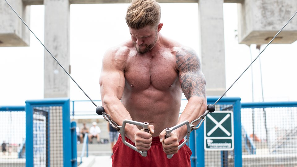 Build A Full Chest With Gavin Matthews