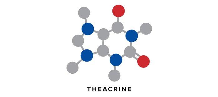 Theacrine
