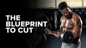 The Blueprint to Cut: 8-Week Old-School Cutting Program