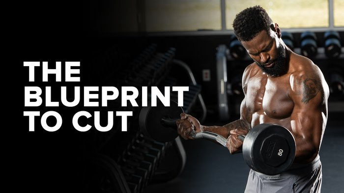 The Blueprint to Cut