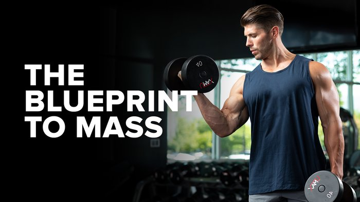The Blueprint to Mass