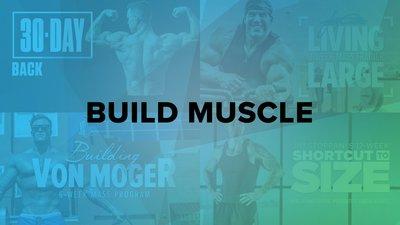 BodyFit: Muscle-Building Plans