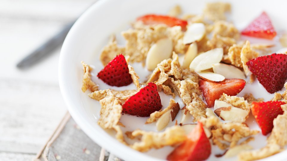 Protein Powder Cereal