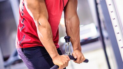 How Many Exercises Per Muscle Group?