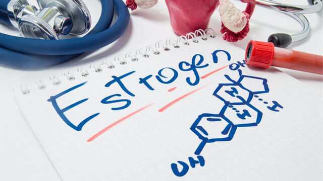 Is Your Estrogen Dominance Linked to Stress, Liver Health, or Your Gut Microbiome?