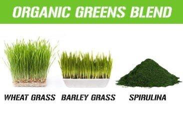 STACKED GREENS Key Ingredients