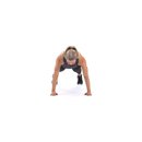 xdb 208a shoulder tap f1 square 130x130 3 Upper Body Workouts for Women
