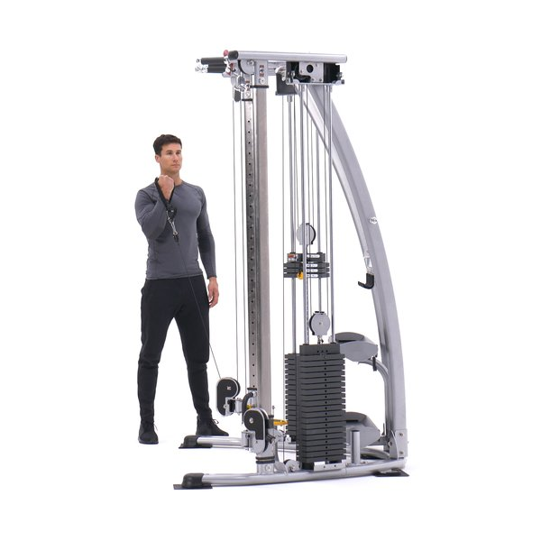 Standing One-Arm Cable Curl thumbnail image