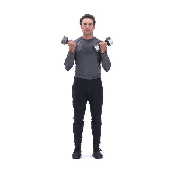 Dumbbell Bicep Curl thumbnail image