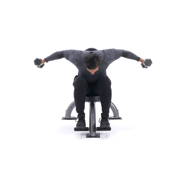 Seated rear delt fly thumbnail image