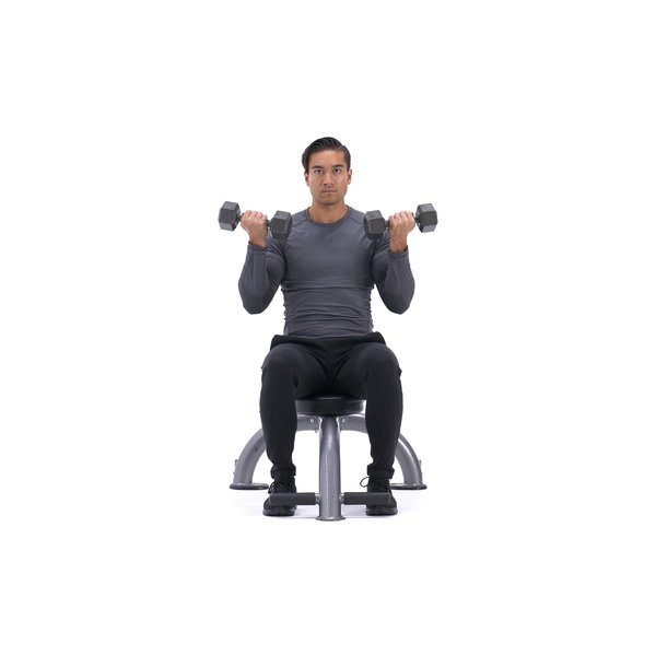 Seated dumbbell biceps curl thumbnail image