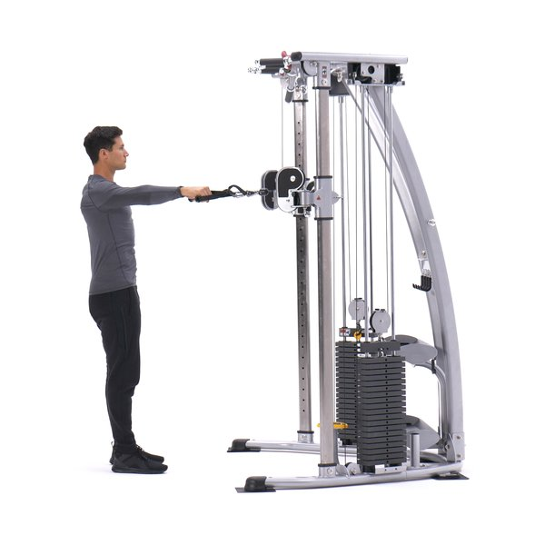 Standing cable rear delt row thumbnail image