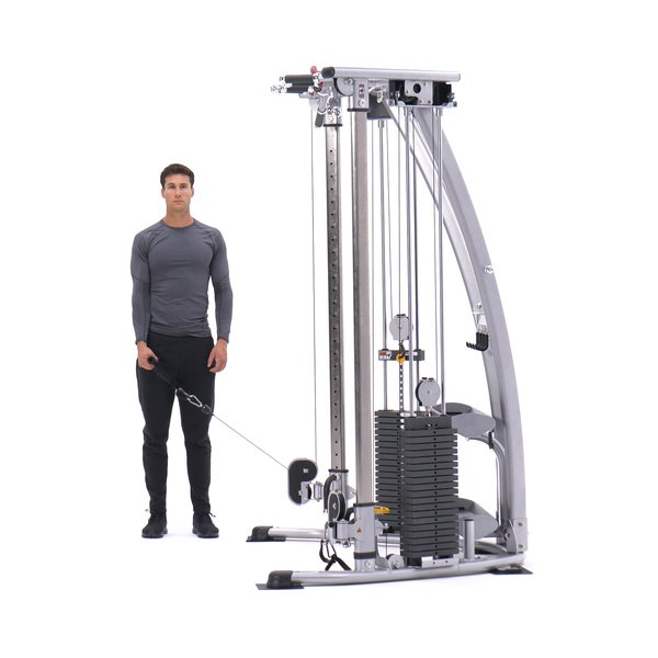 Standing Low-Pulley Deltoid Raise thumbnail image