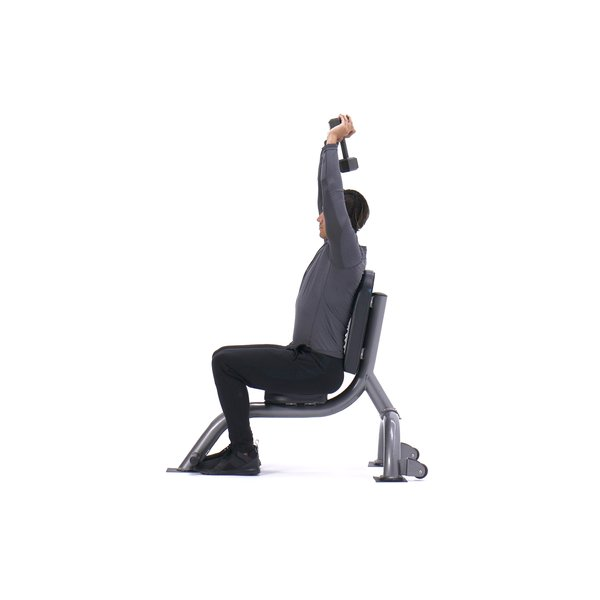 Seated triceps press thumbnail image