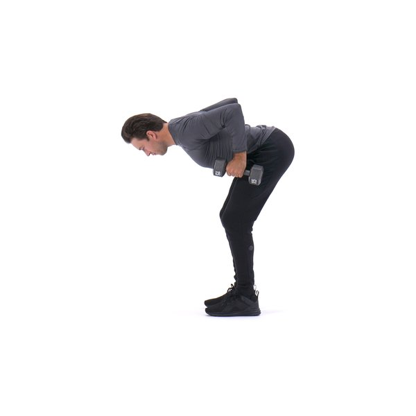 Dumbbell bent-over row thumbnail image