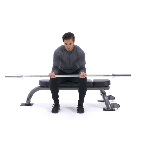 Seated palms-down wrist curl thumbnail image