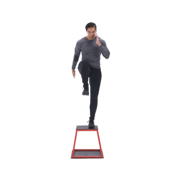 Step-up with knee raise thumbnail image