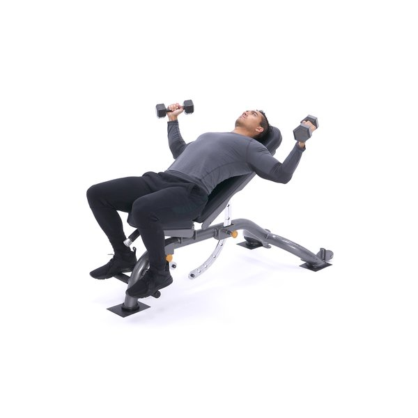 Incline Dumbbell Flyes thumbnail image