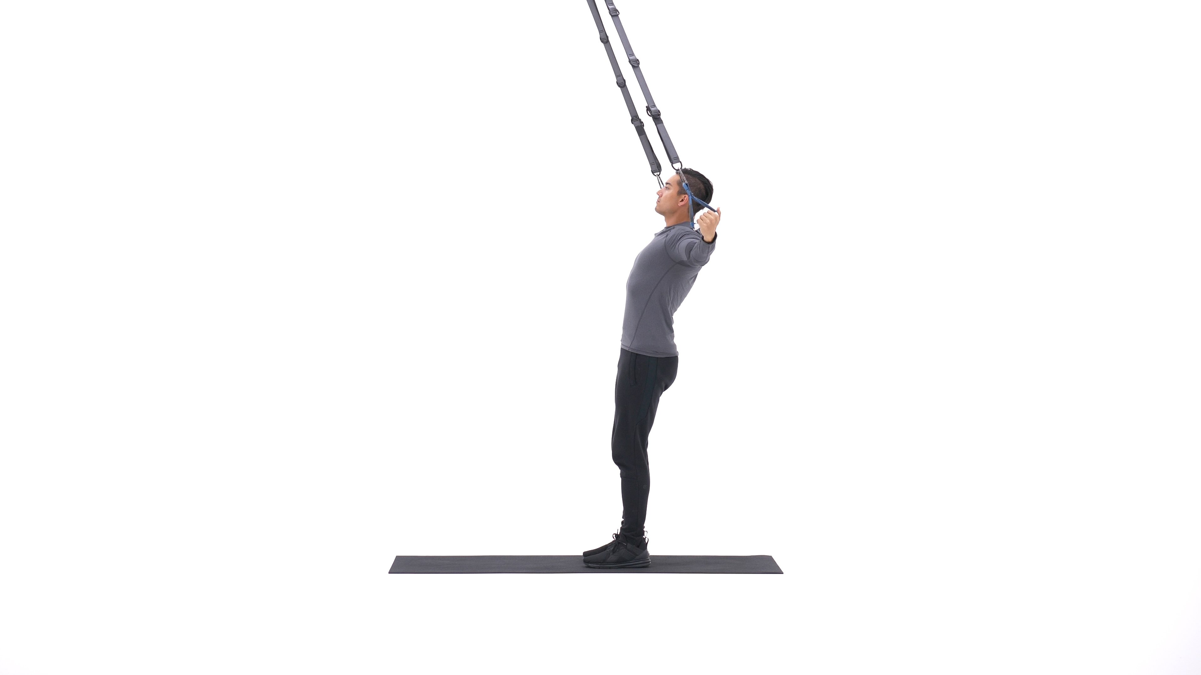 Standing suspended rear delt fly image