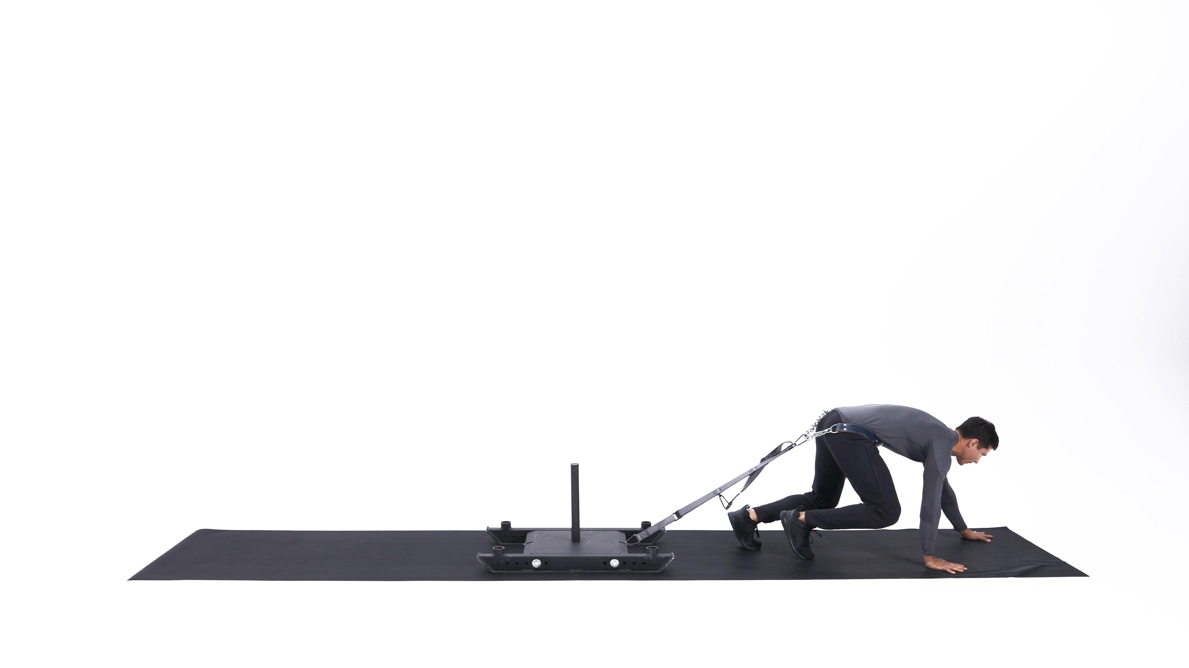 Bear crawl sled drag image