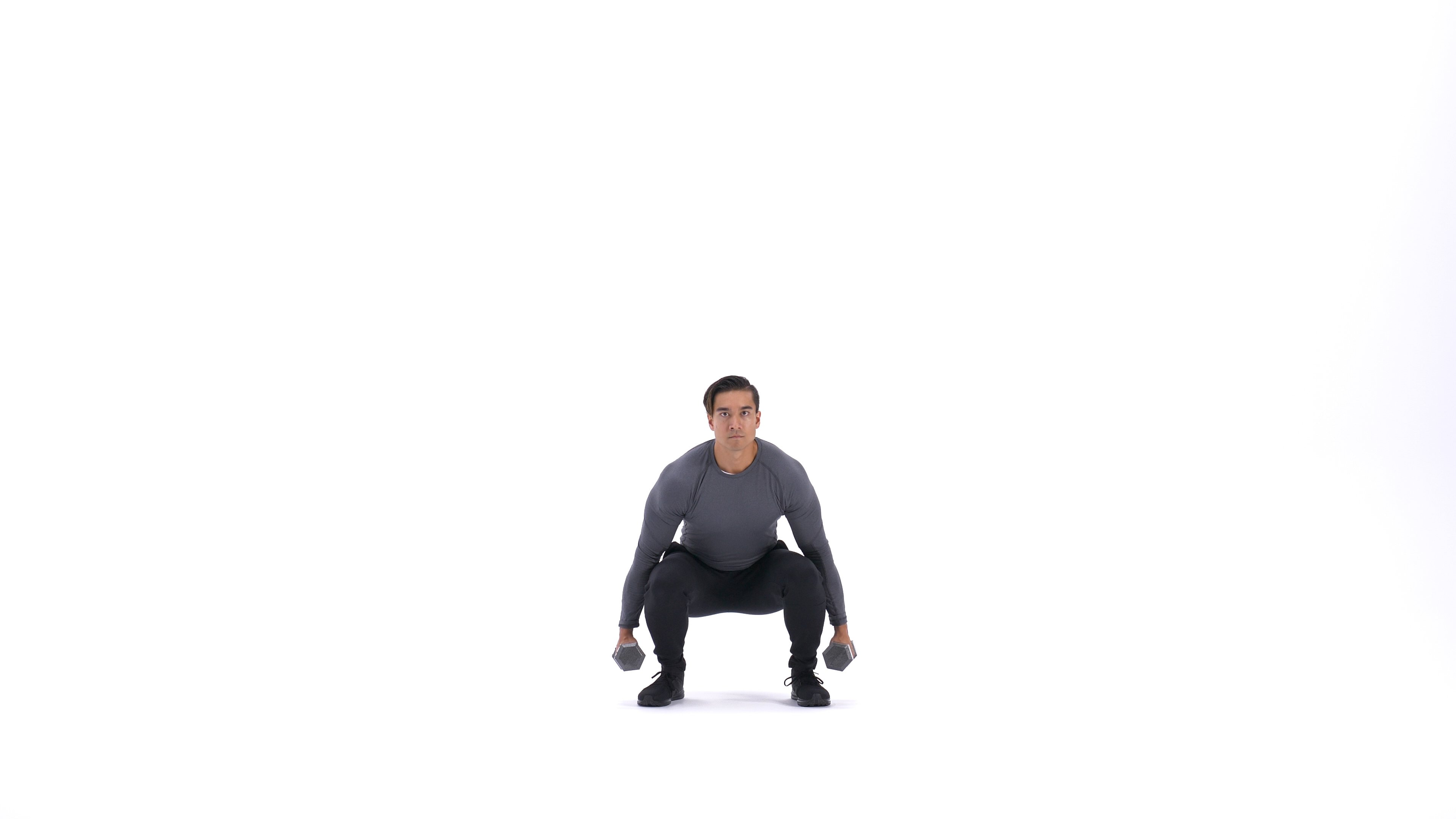 Dumbbell squat image