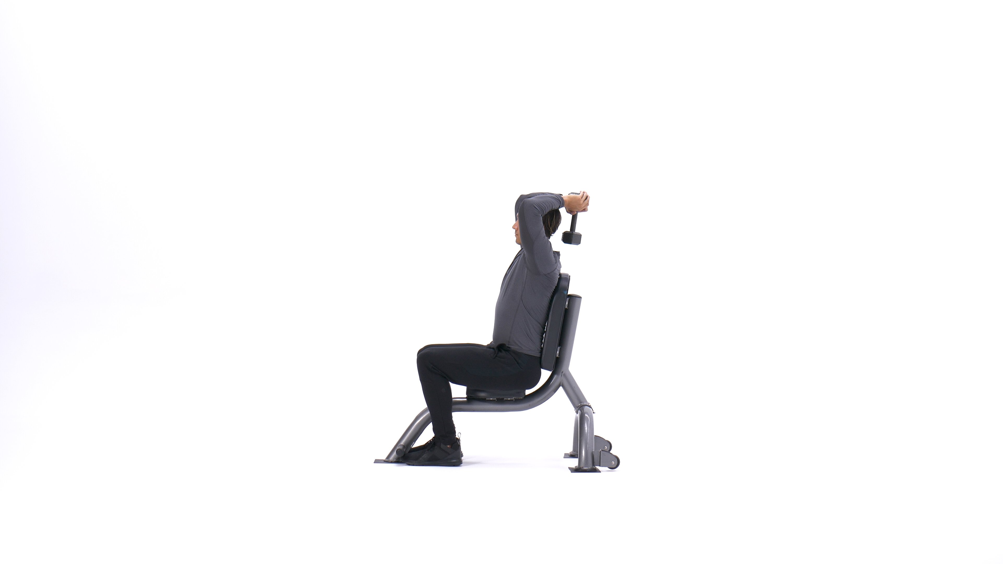 Seated triceps press image